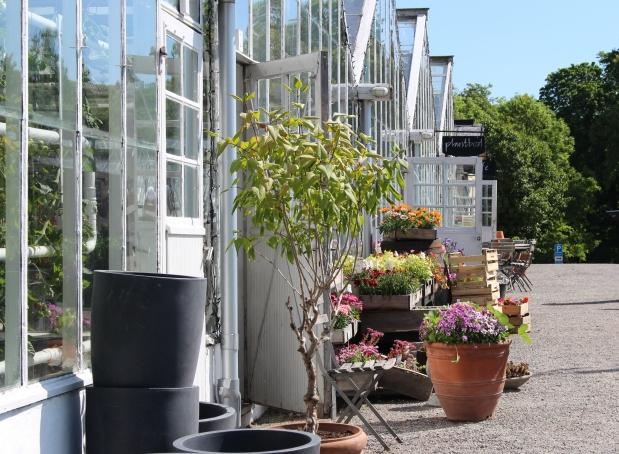 Rosendalin puutarhassa – TerveisiäTukholmasta